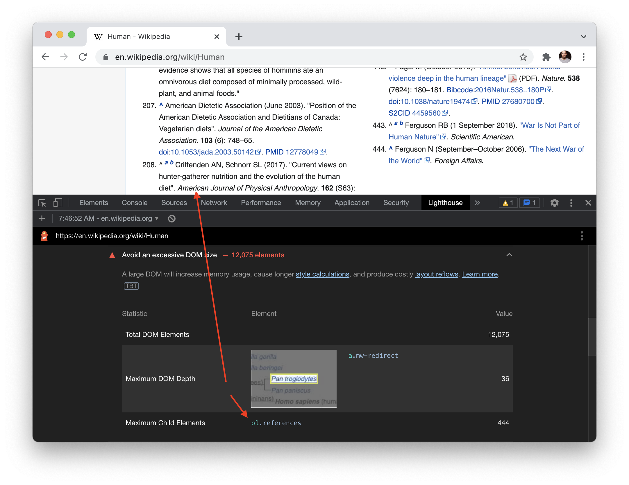 Screenshot of the Wikipedia entry for 'Human' with the Lighthouse dev tools open showing a warning about the number of DOM elements.