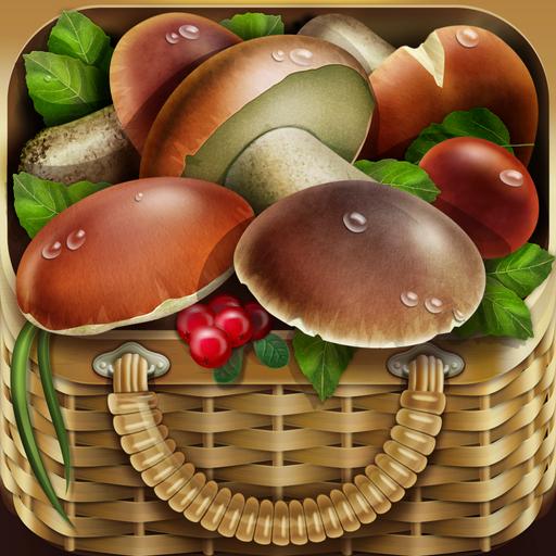 iMushroom app icon