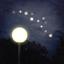 Flight of the Fireflies app icon