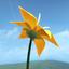 Flower app icon