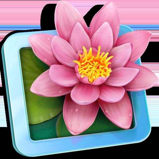 LilyView app icon