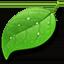 Coda app icon