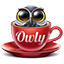 Owly - Display Sleep Prevention app icon